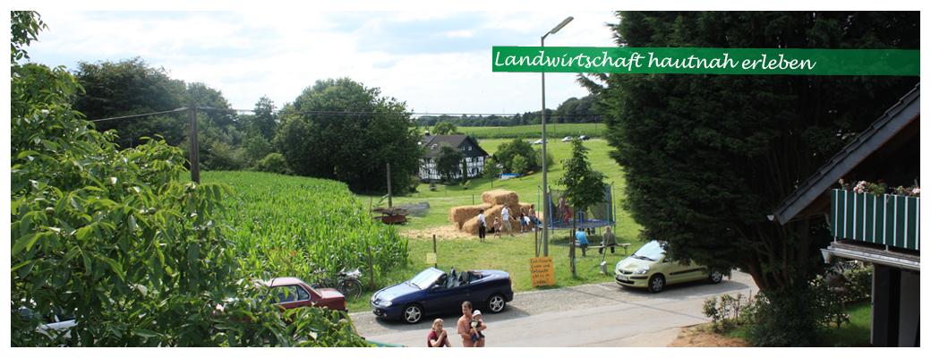 Startseite-Slider-Bauerngut-entdecken_Hof