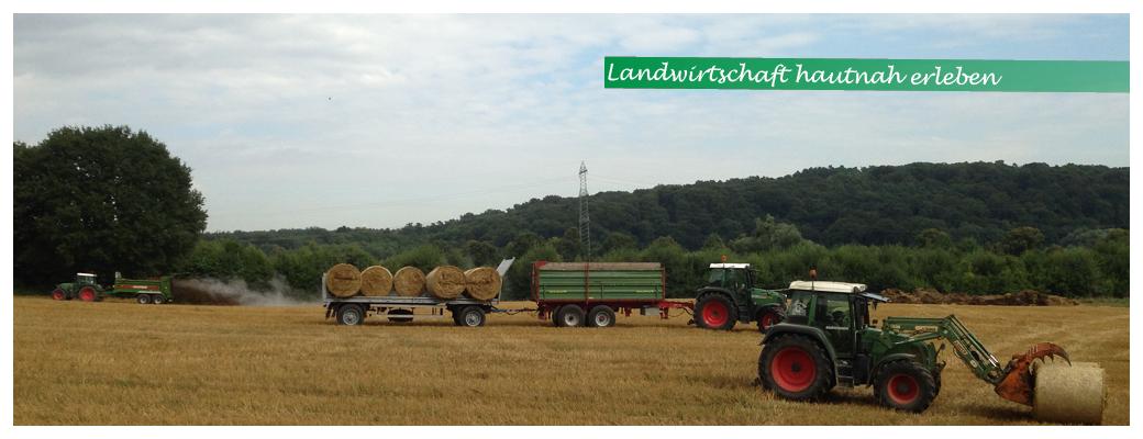 Startseite-Slider-Bauerngut-entdecken_Traktoren